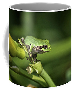 Ready Coffee Mug