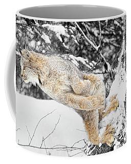 Ready, Set, Go  Coffee Mug by Steve McKinzie