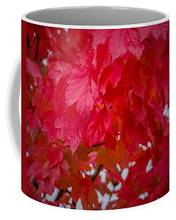 Ready To Fall Coffee Mug
