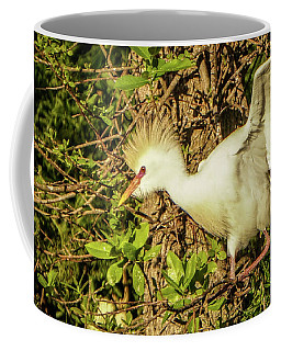 Coffee Mug featuring the photograph Ready To Fly by Jane Luxton