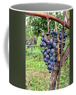 Ready To Harvest Coffee Mug