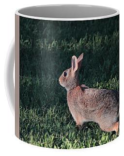 Ready To Run Coffee Mug