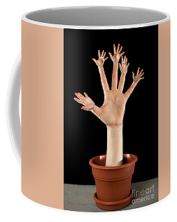 Real Palm Tree Coffee Mug