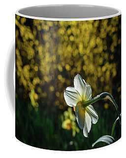 Rear View Daffodil Coffee Mug