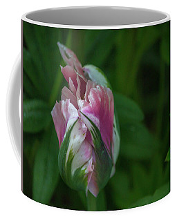 Red And White Bud 1 Coffee Mug