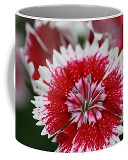 Red And White Flower Coffee Mug