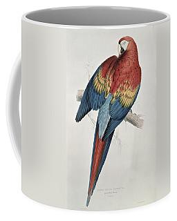 Red And Yellow Macaw  Coffee Mug