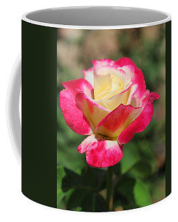 Red And Yellow Rose Coffee Mug