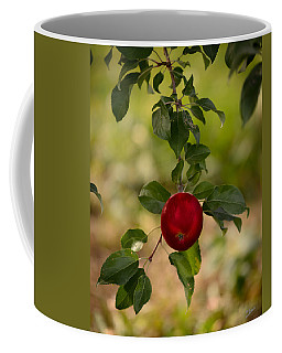 Red Apple Ready For Picking Coffee Mug