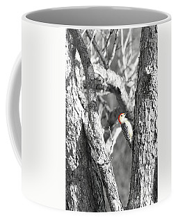 Coffee Mug featuring the photograph Red-bellied Woodpecker by Benanne Stiens