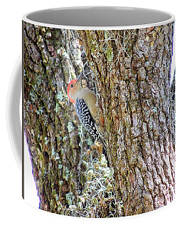 Coffee Mug featuring the photograph Red-bellied Woodpecker By Bill Holkham by Bill Holkham