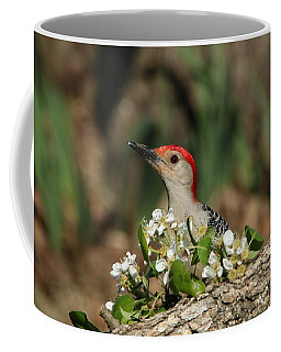 Red-bellied Woodpecker In Spring Coffee Mug by Sheila Brown