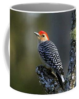 Red-bellied Woodpecker Coffee Mug by Myrna Bradshaw
