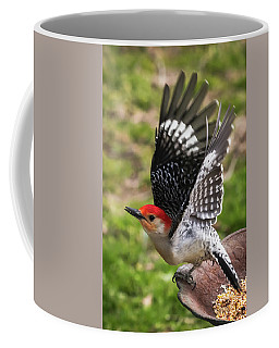 Coffee Mug featuring the photograph Red Bellied Woodpecker Take Off by Terry DeLuco
