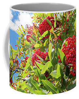 Red Berries, Blue Skies Coffee Mug
