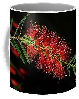 Coffee Mug featuring the photograph Red Bottlebrush By Kaye Menner by Kaye Menner