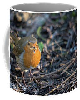 Red Brest Robin  Coffee Mug
