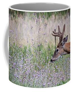Red Bucks 4 Coffee Mug