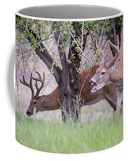 Red Bucks 5 Coffee Mug