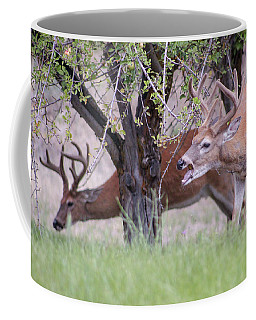 Red Bucks 5 Coffee Mug