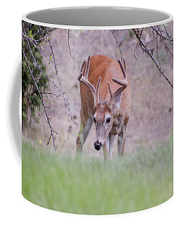 Red Bucks 6 Coffee Mug
