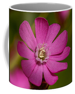 Red Campion Coffee Mug