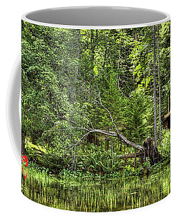 Coffee Mug featuring the photograph Red Canoe Panorama by David Patterson