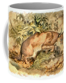 Red Caracal Coffee Mug