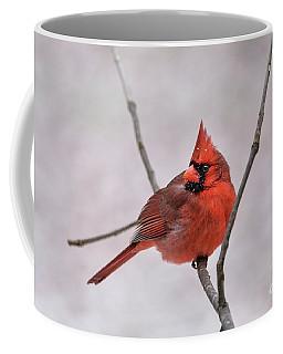 Red Cardinal Coffee Mug by Debbie Green