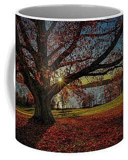 Red Carpet Coffee Mug