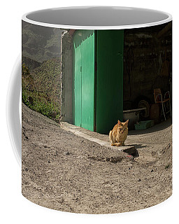 Red Cat And Green Shed Coffee Mug