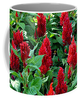 Coffee Mug featuring the photograph Red Celosia Garden by Glenn McCarthy Art and Photography