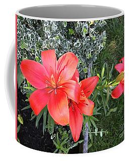 Red Day Lilies Coffee Mug