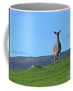 Coffee Mug featuring the photograph Red Deer Hind - On Watch by Phil Banks