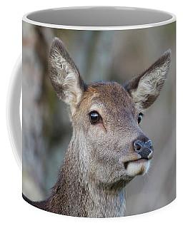 Coffee Mug featuring the photograph Red Deer Hind - Scottish Highlands by Karen Van Der Zijden