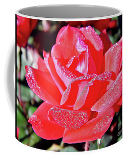 Red - Dew Covered  - Rose Coffee Mug