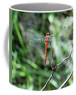 Coffee Mug featuring the photograph Red Dragonfly by Karen Silvestri