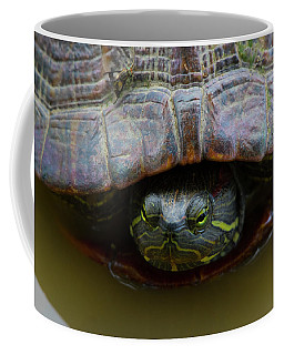 Red Eared Slider Turtle Coffee Mug