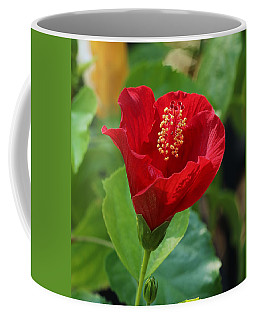Coffee Mug featuring the photograph Red Elegance by Sheila Brown