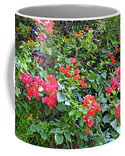 Coffee Mug featuring the photograph Red Flower Hedge by Francesca Mackenney
