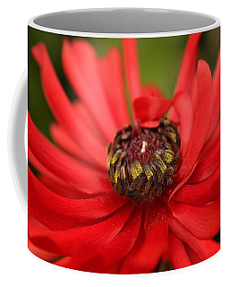 Red Flower Coffee Mug by Ralph A  Ledergerber-Photography