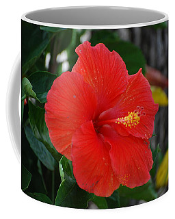 Coffee Mug featuring the photograph Red Flower by Rob Hans
