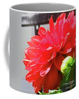 Red Flowers R20 Coffee Mug
