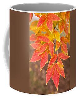 Red Foliage On Farmland In Vermont Coffee Mug