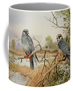 Red-footed Falcons Coffee Mug