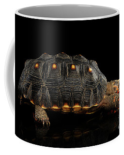 Coffee Mug featuring the photograph Red-footed Tortoise by Sergey Taran