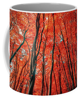 Red Forest Of Sunlight Coffee Mug