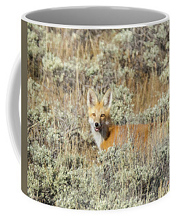 Red Fox In Sage Brush Coffee Mug