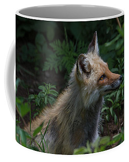Red Fox In The Forest Coffee Mug