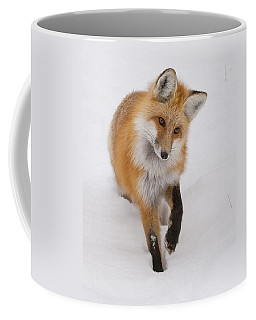 Red Fox Portrait Coffee Mug